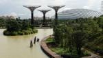 Singapore Gardens II