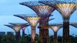 Singapore Gardens III