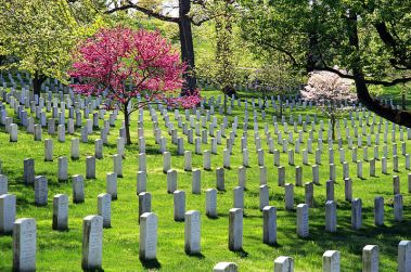 Arlington National Cemetery V