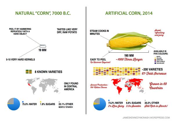 Artificial vs Natural Watermelon