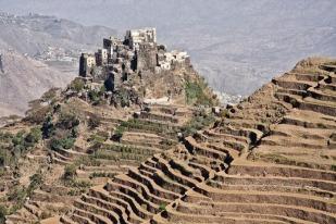 Socotra, Yemen VII