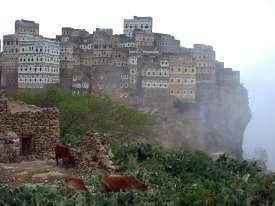 Socotra, Yemen VIII