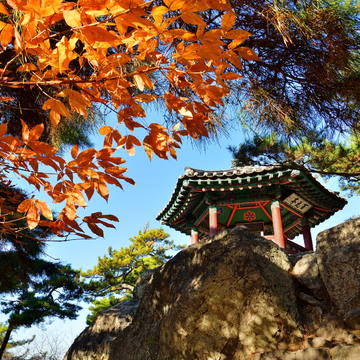 Baekje Historic Areas I